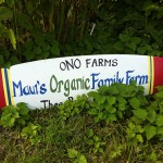 Discovering delicious organic tropical fruit at Maui's Ono Organic Farm