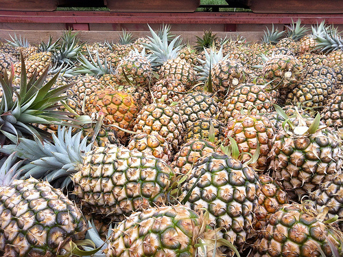 maui-pineapples-in-crates