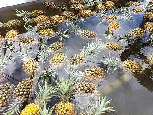maui-preparing-pineapples-for-sale
