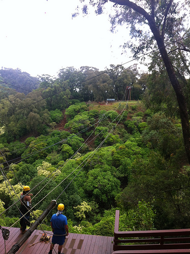 maui-upcountry-zipline