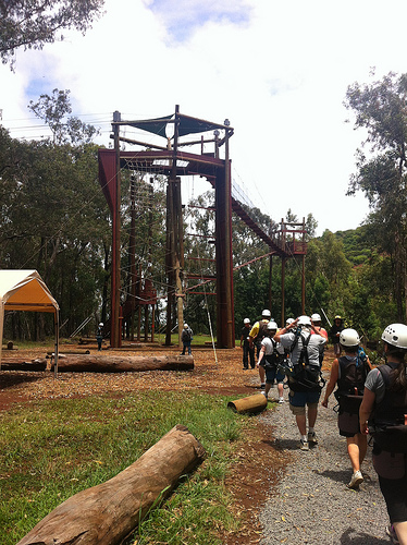 piiholo-zipline-group
