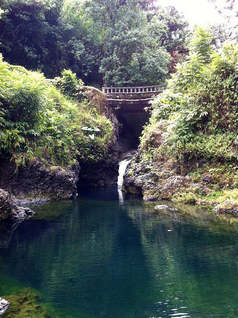 road-to-hana-chings-pond
