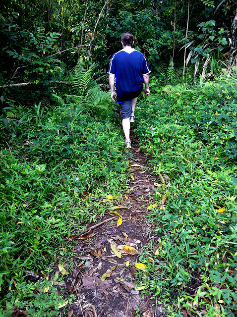 road-to-hana-road-trip-explore