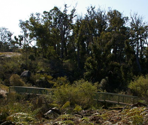 Western Australia - The Bibbulmun Track