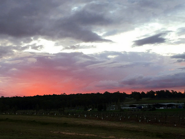 Hunter Valley sunset views